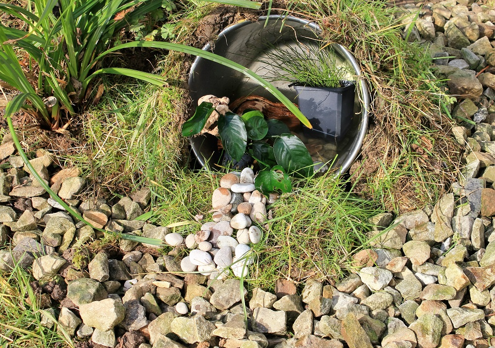 How To Create A Mini Wildlife Pond Greenfinder