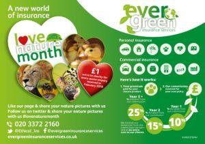 green insurance offer