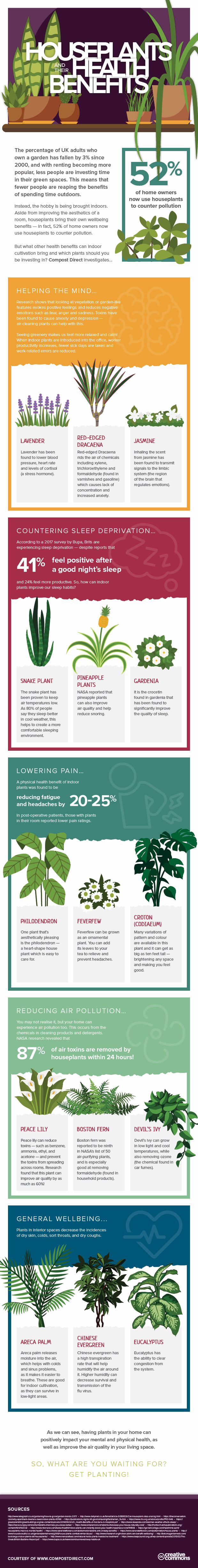 health benefits house plants