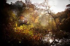 woodland holidays UK